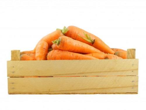 Как сохранить морковь в подвале до весны. Методы хранения
