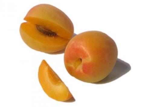 Нектарин это гибрид персика и сливы