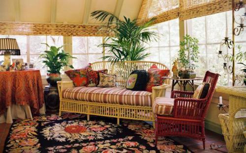 Название комнатных растений и их родина. Комнатные растения: родина, виды, уход
