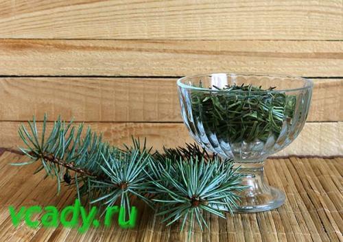 Иголки от елки применение. Использование хвои на садовом участке