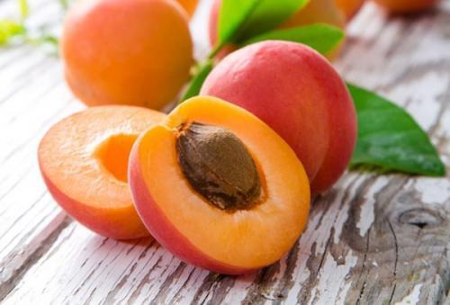 Посадка персика из косточки осенью. Варианты посева персиковых косточек