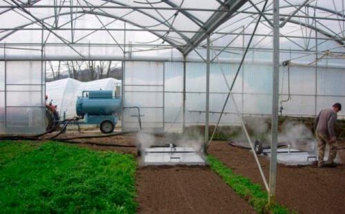 Дезинфекция почвы осенью от болезней и вредителей. Как и чем обеззаразить почву?