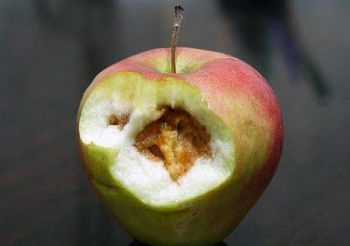качественными картинка гнилое яблоко внутри последним данным, результате