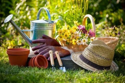 Как отбелить руки после огорода в домашних условиях. Как отмыть руки после огорода: 5 рецептов и 1 семейная хитрость. А я так делаю