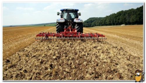 Как подготовить землю осенью под картофель