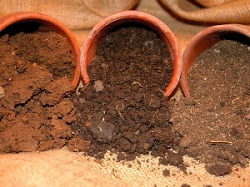 Земля для рассады перцев и томатов. Смешиваем компоненты