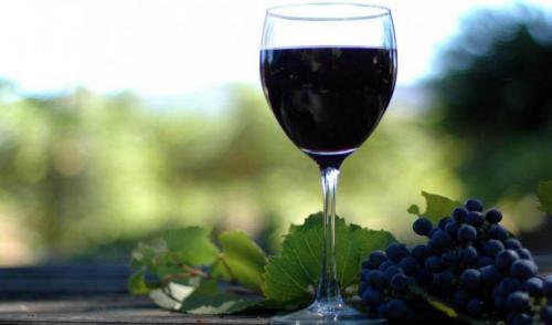 Когда собирают виноград для вина. В чём преимущества сорта Изабелла для приготовления вина?