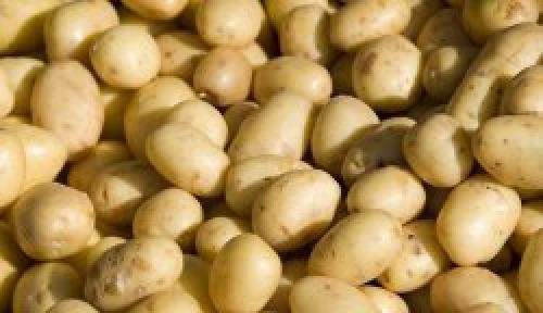 Ящик для картошки в коридор. Ящик для картошки своими руками в коридоре