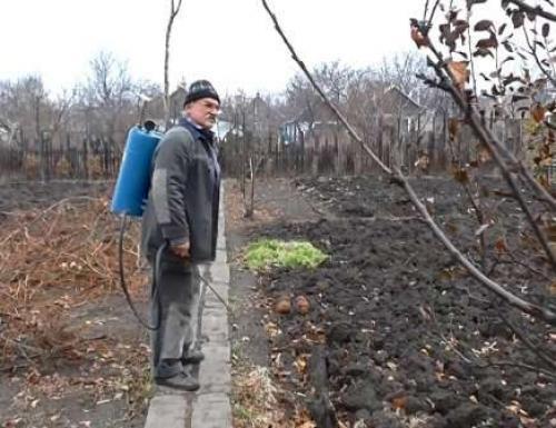 Обеззараживание почвы осенью на даче. Обработка почвы осенью –, что использовать?