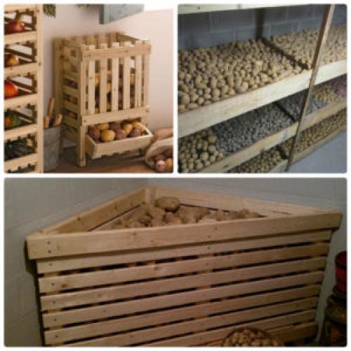Ящики для хранения овощей в погребе. Как хранить овощи в погребе?