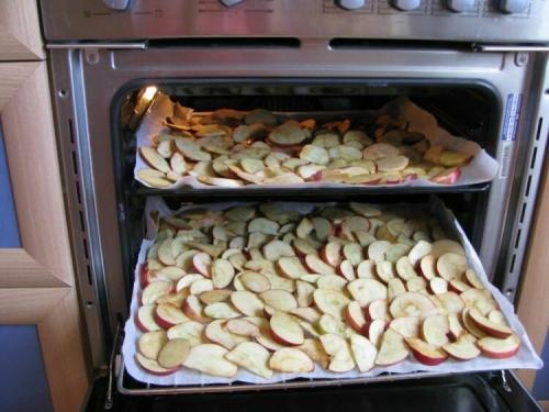 Сушим яблоки в духовке газовой плиты. Сушим яблоки в духовке
