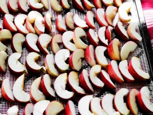 Как высушить в духовке яблоки. Сушка яблок в электрической духовке на противне