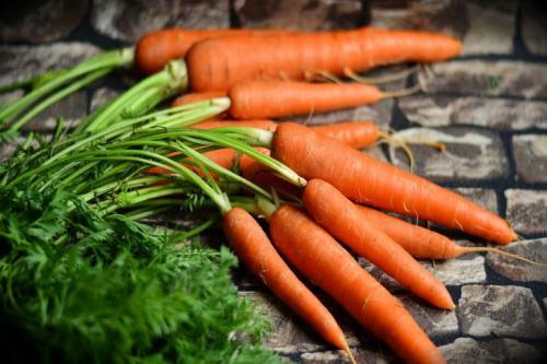 Как сохранить морковь до нового урожая. Как сохранить морковь до первого урожая: 7 способов