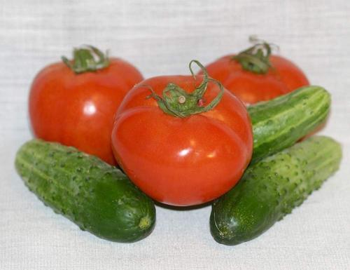 Можно сажать в одной теплице помидоры и огурцы. Можно ли в одной теплице выращивать огурцы и помидоры? Личный опыт.