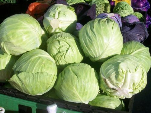 Сбор белокочанной капусты. Как понять, что пора проводить сбор урожая белокочанной капусты