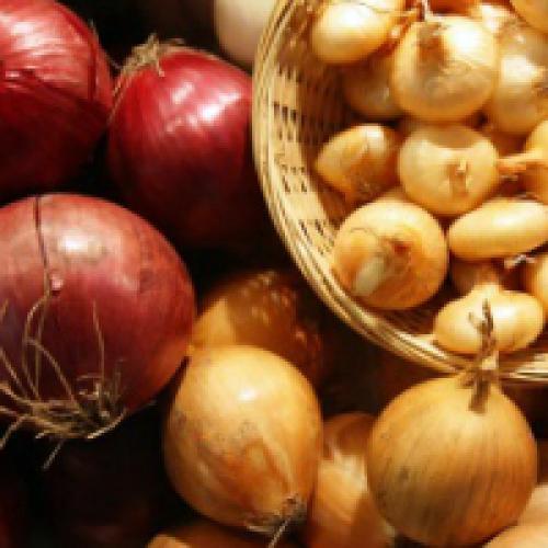 Условия хранения лука. Как хранить лук зимой