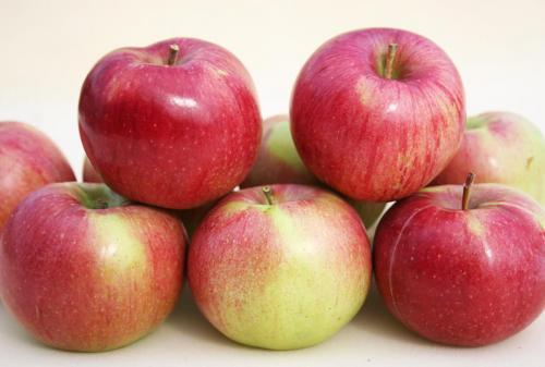 Сушим яблоки в духовке газовой. Как подготовить плоды к сушке