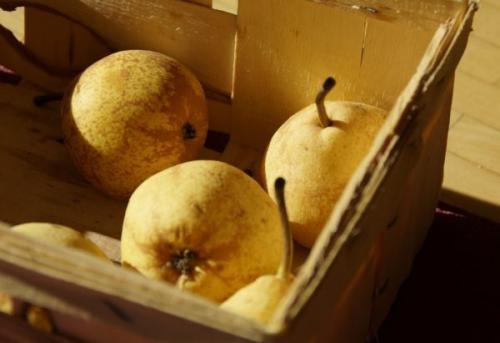 Как хранить груши на зиму в погребе. Как подготовить тару