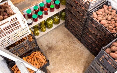 Ящик для овощей на балконе зимой. Как правильно хранить овощи на балконе