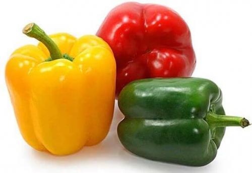 Выращивание болгарского перца в домашних условиях. Перец острый и сладкий