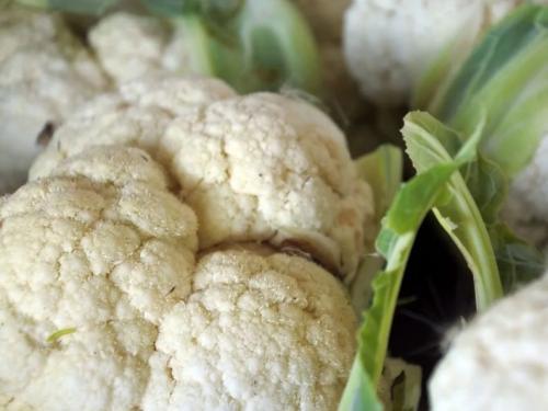 Как заморозить белокочанную капусту в морозилке. Как правильно заморозить капусту на зиму в домашних условиях