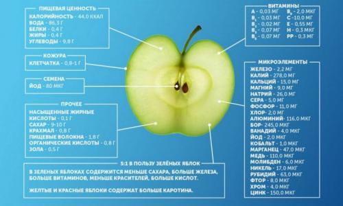 Заморозка яблок на зиму. Как заморозить яблоки в домашних условиях на зиму в морозилке?