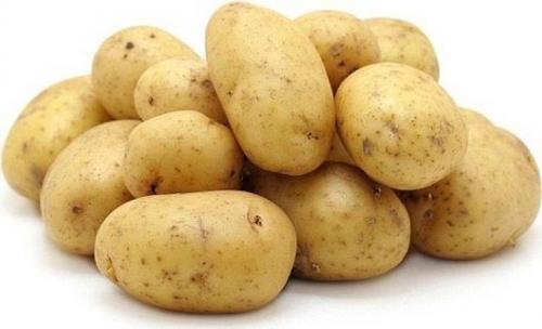 Картофель сорт галина. Сорт картофеля Гала – характеристика, описание, вкусовые качества, отзывы