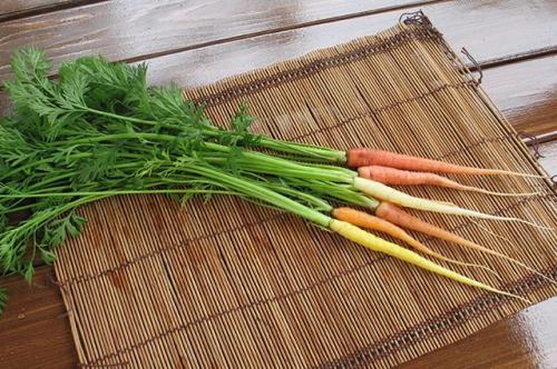 Нужно ли мыть морковь перед хранением. Выращивание и хранение