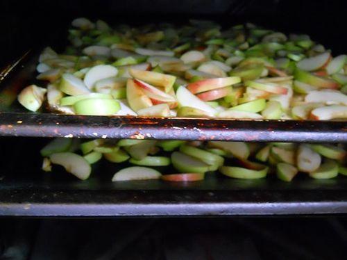 Сушить яблоки в духовке газовой плиты. Подробное описание процесса